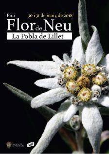 Fira Flor de Neu